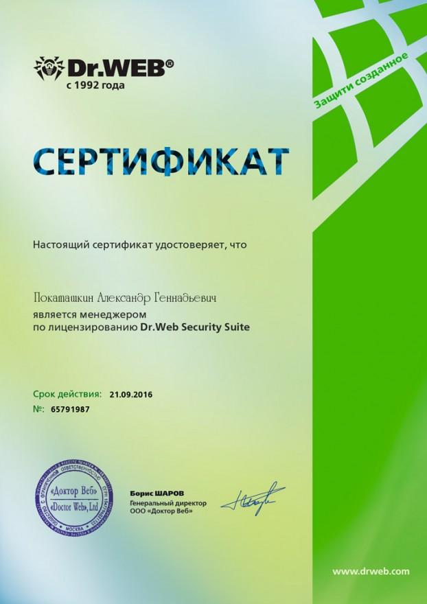 DrWeb-Pokatashkin-2016
