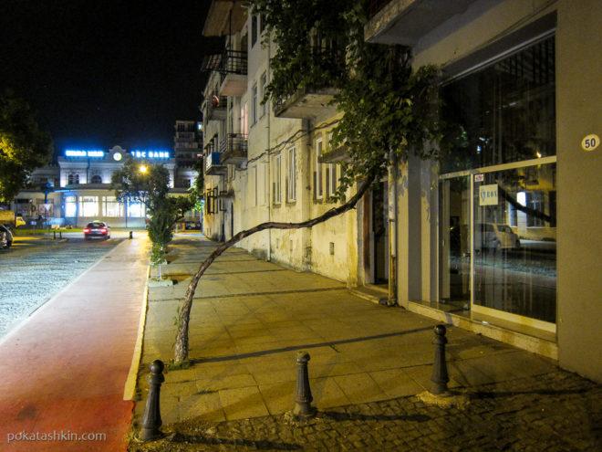 Виноград поперёк тротуара