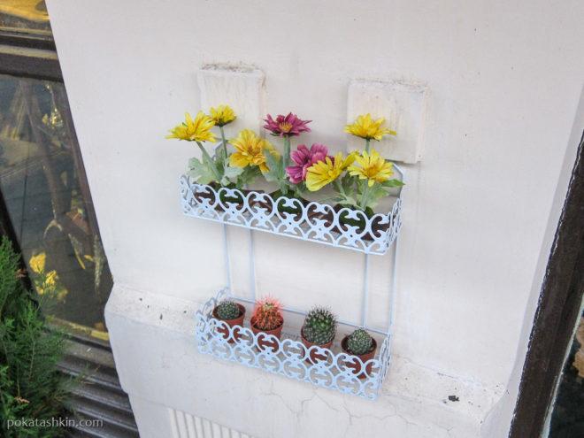 Батуми. Цветы на улицах