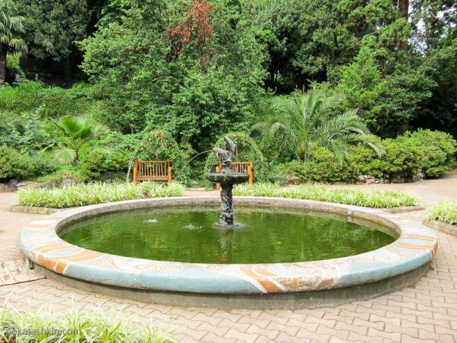 Фонтан в ботаническом саду