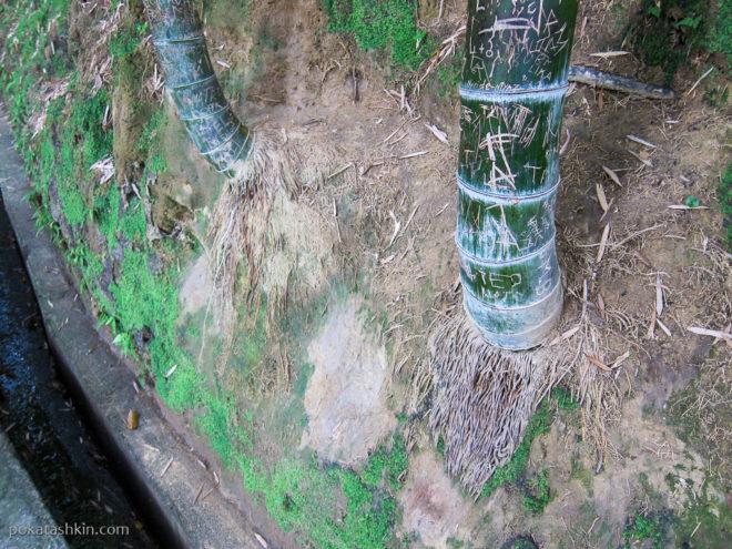 Надписи на бабмуке