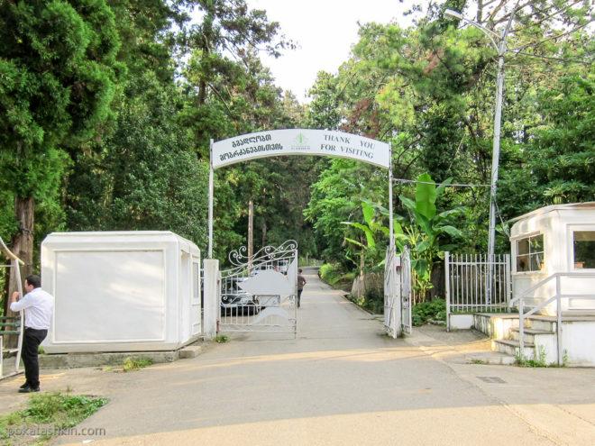 Верхний вход в Батумский ботанический сад
