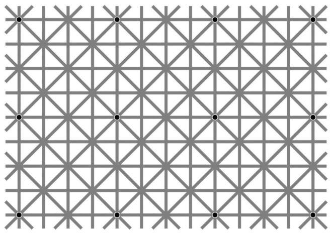 Оптическая иллюзия: 12 черных точек