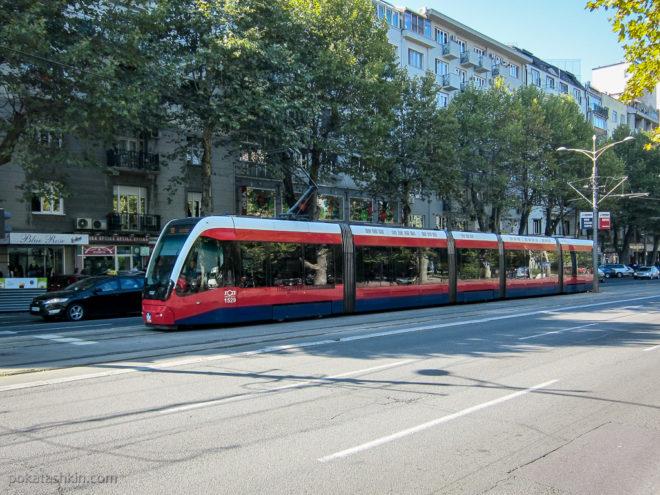 Трамвай в Белграде