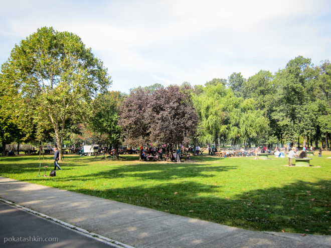 Место для пикников в парке Ада Циганлия