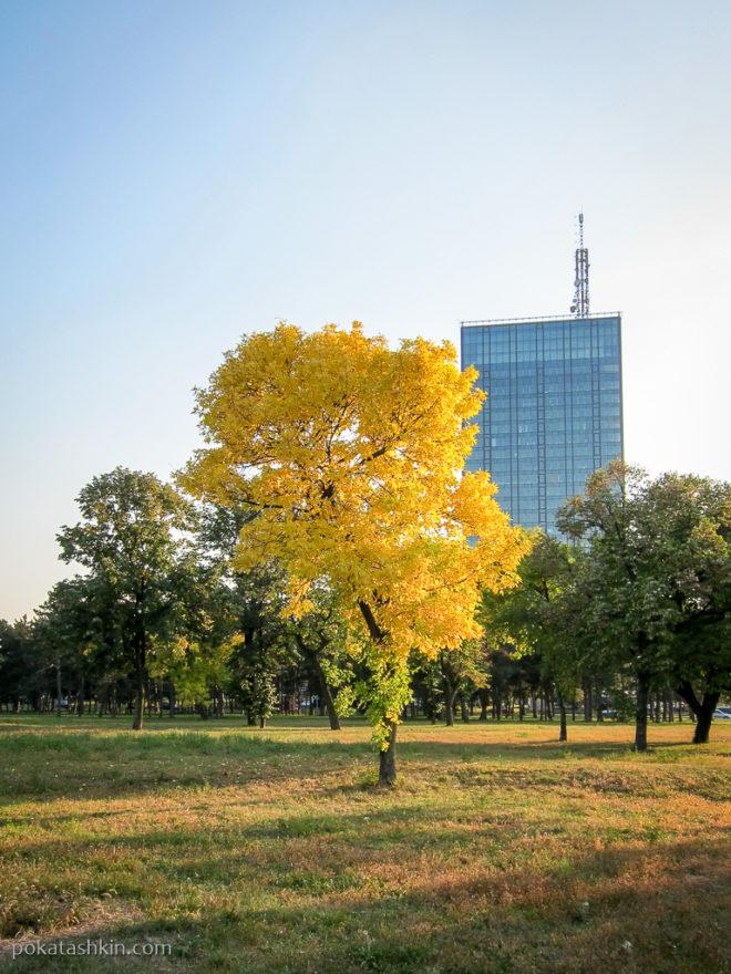 Осень в Белграде