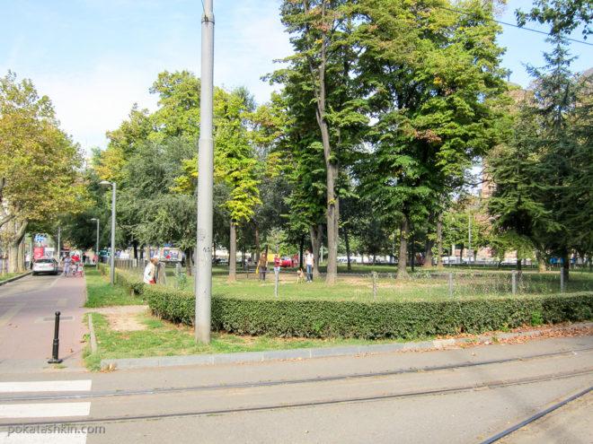 Территория для выгула собак в Белграде