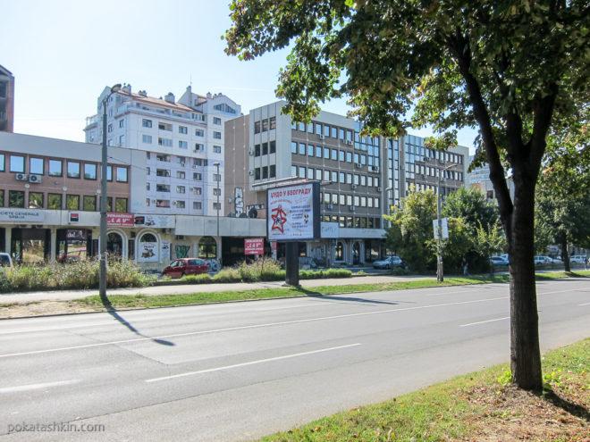 Џудо у Београду