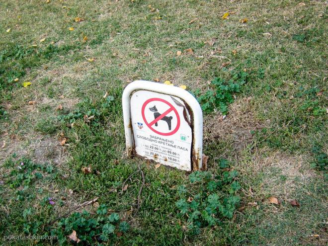 Выгул собак запрещён