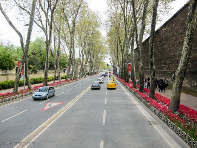 Клумбы в Стамбуле