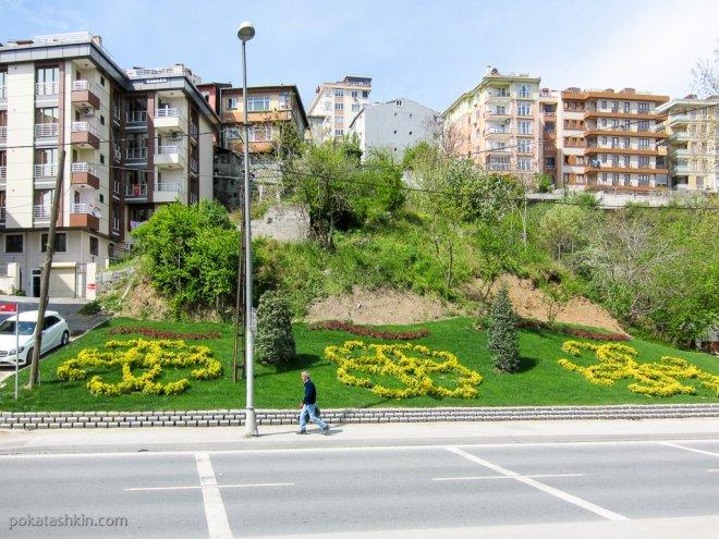 Цветы в Стамбуле