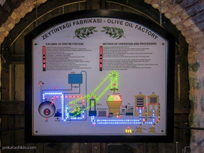 Технологический процесс фабрики по производству оливкового масла