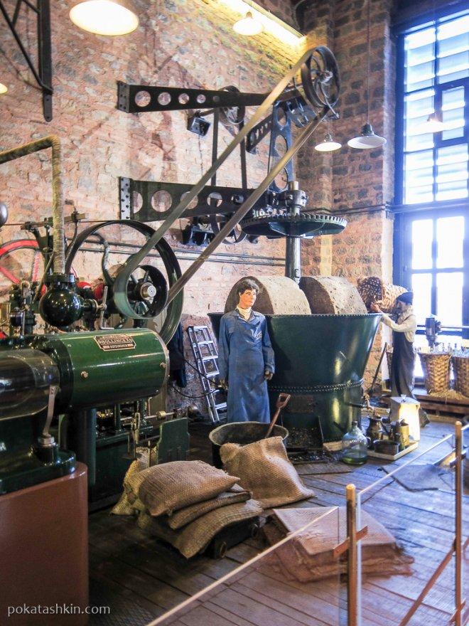 Оливковая фабрика: перемол оливок