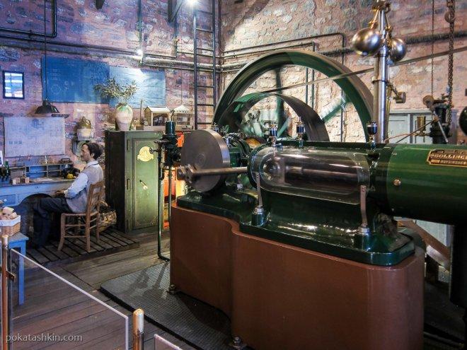 Оливковая фабрика: отжим оливок