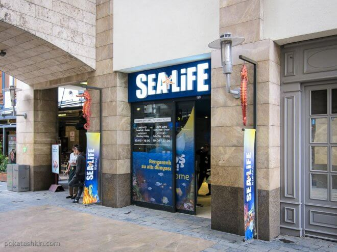 Вход в аквариум SEA LIFE Istanbul