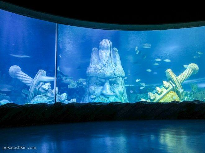 Sea Bed в аквариуме SEA LIFE Istanbul