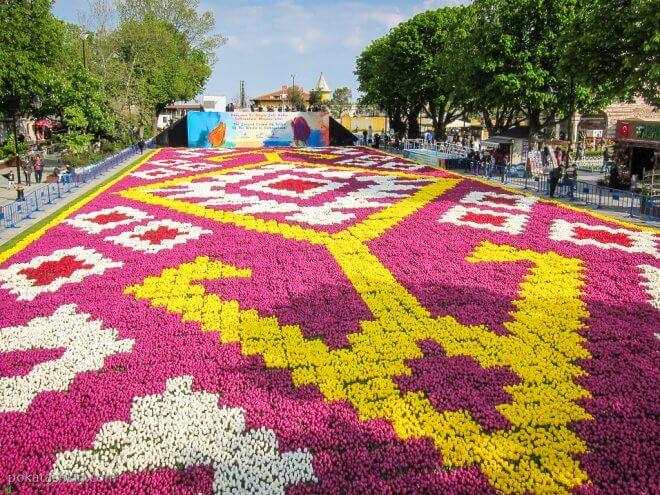 Самый бошльшой в мире ковер из тюльпанов