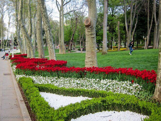 Клумбы в парке Гюльхане (Gülhane Parki)