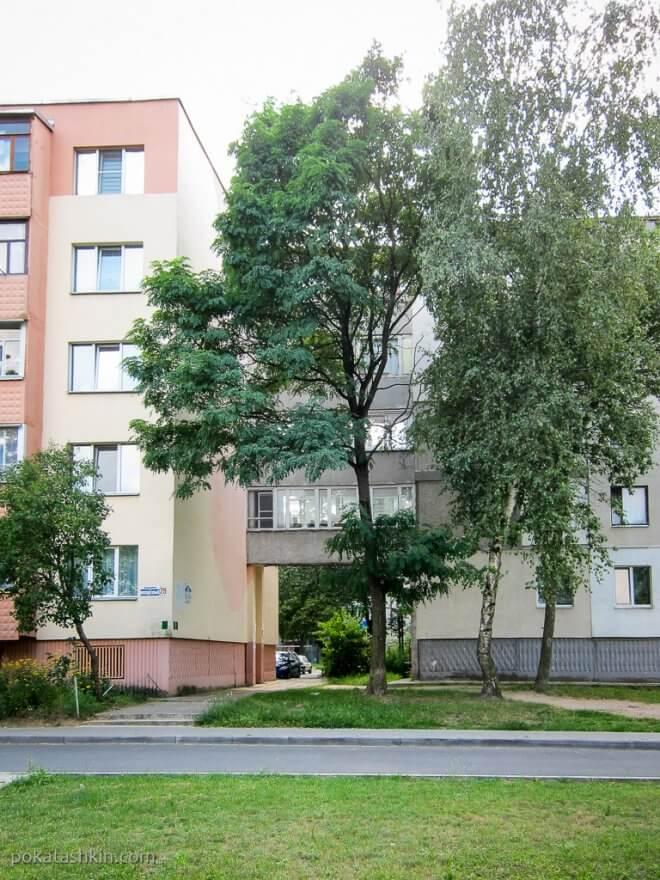 Балконы между домами в Светлогорске