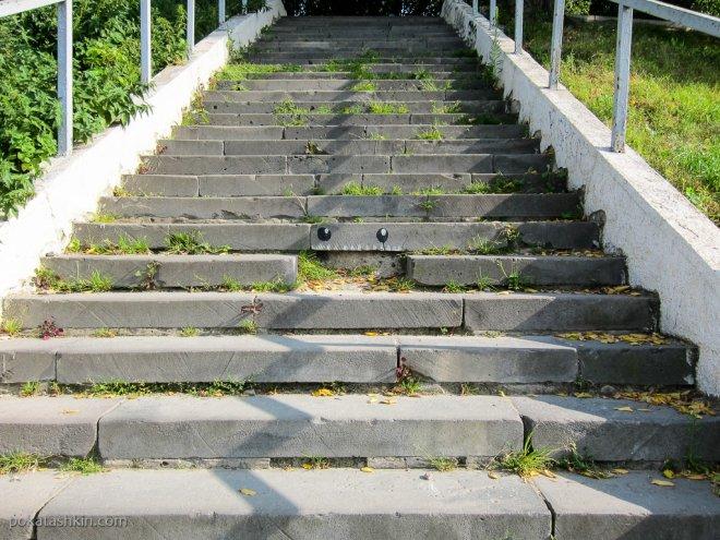 Лестница с глазами (Нижний Новгород)