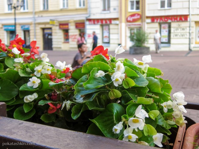 Цветы на террасе ресторана