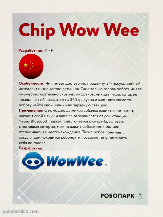 Chip Wow Wee