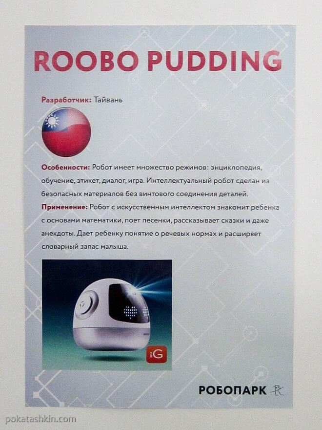 Roobo Pudding