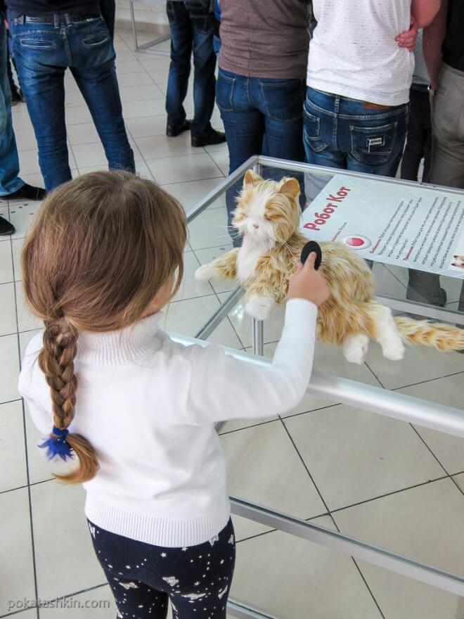 Робот Кот