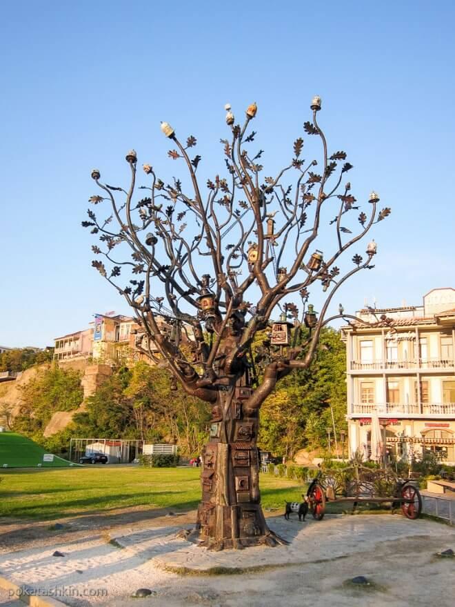 Железное дерево в парке Рике