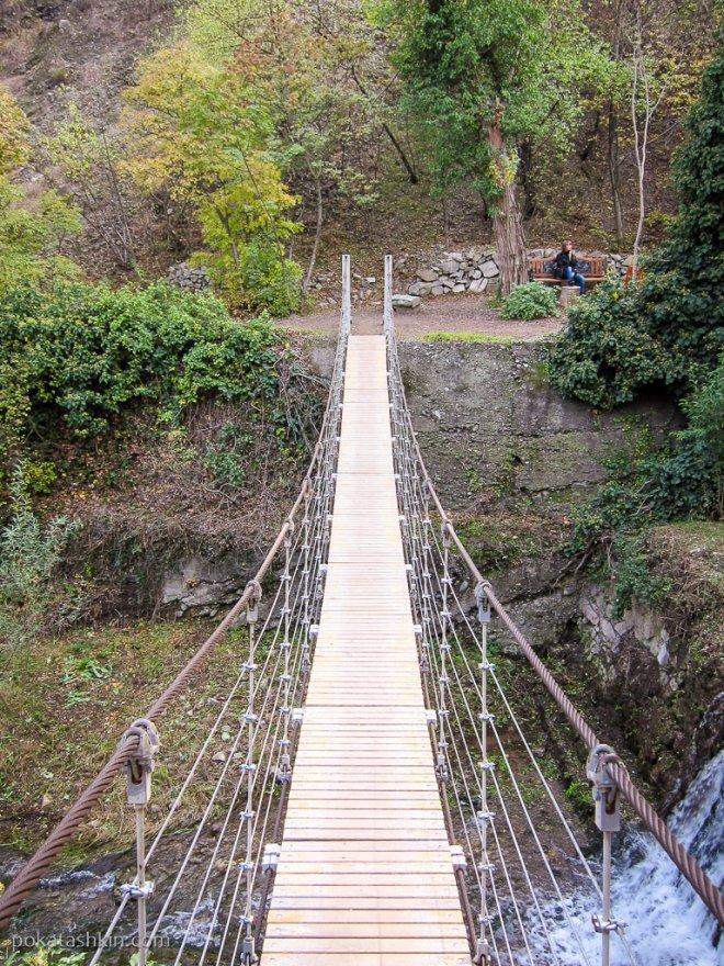 Подвесной мост в ботаническом саду, Тбилиси