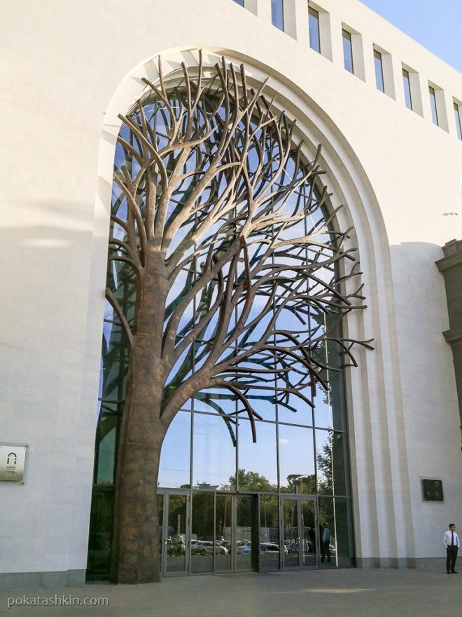 Дерево на окне (Ереван)